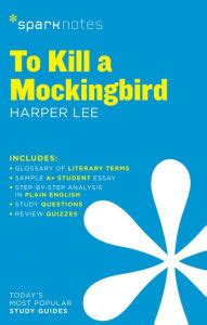 To Kill a Mockingbird Essay Prompts: Novel Themes